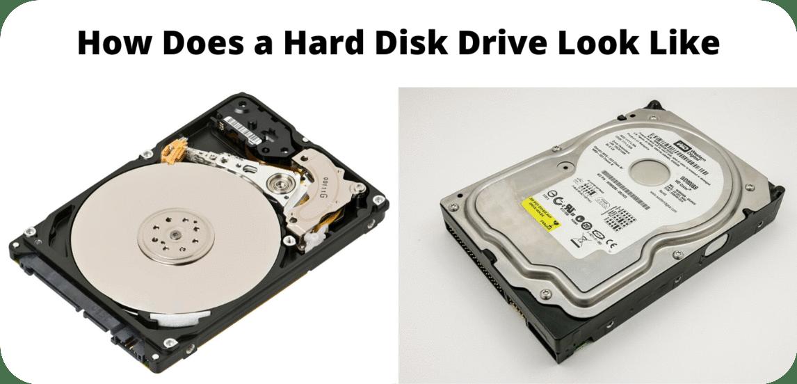 SSD vs HDD vs M.2: आपके लिए सबसे अच्छा Storage कौनसा है? 1
